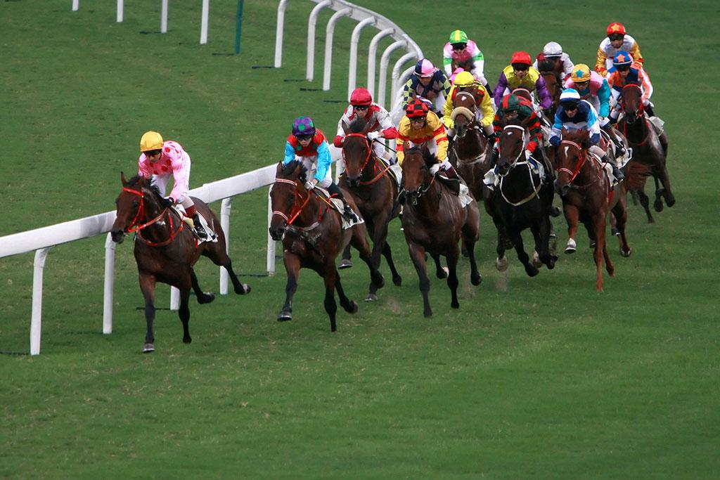 Horse racing at Newbury