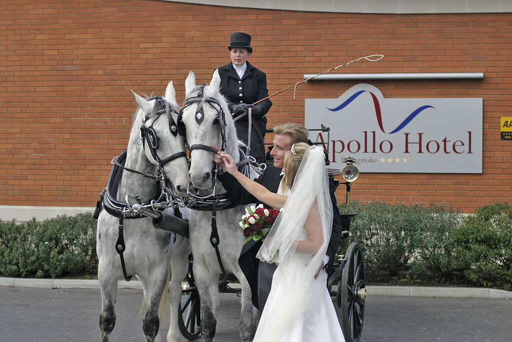 wedding with horse and carriage in Basingstoke